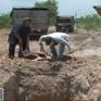 Đồng Nai: Thu mua lợn chết với giá 5.000 đồng bỏ mối cho các lò mổ