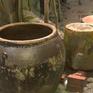 Bệnh sốt xuất huyết gia tăng do tập quán trữ nước mưa sử dụng của người dân