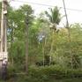 Nhiều bất cập trong quản lý lưới điện nông thôn tại Thừa Thiên - Huế