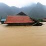 Bộ Y tế cấp thuốc, phao cứu sinh cho các tỉnh ảnh hưởng lũ lụt