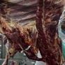 Brazil hối thúc Mỹ nối lại nhập khẩu thịt bò