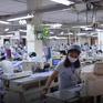 Doanh nghiệp dệt may và bài toán phục hồi xuất khẩu
