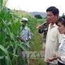 Hàng nghìn hộ dân Tây Nguyên nhận hỗ trợ sau hạn hán