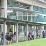 Người dân Singapore thích... đi bộ