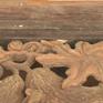 Người dân Bình Định nỗ lực bảo tồn nhà cổ ở vùng quê