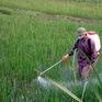 Ô nhiễm từ sản xuất nông nghiệp