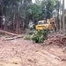 """Lãnh đạo huyện Tĩnh Gia, Thanh Hóa: """"Làm gì có chuyện phá rừng bừa bãi!"""""""