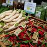 Tìm hiểu sự khác nhau giữa rau an toàn và rau hữu cơ