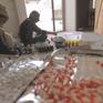 Pakistan: Bác sĩ phát hiện thuốc chuột, gạch trong những viên thuốc giả