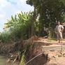 Hơn 260 điểm sạt lở bờ sông ở ĐBSCL