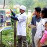 Cảnh báo nguy cơ bùng phát bệnh sốt rét tại Bình Phước