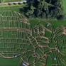 Độc đáo khu vườn theo phong cách Star Wars