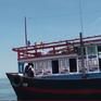 Ngư dân góp vốn đóng tàu để vươn khơi