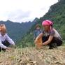 Nguy cơ thiếu đói ở vùng núi sau mưa lũ