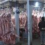 Đạt thỏa thuận xuất khẩu thịt lợn chính ngạch sang Trung Quốc