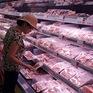 Giá lợn hơi về mức 70.000 đồng/kg