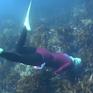 Ama - Những thợ lặn nữ bí ẩn ở Nhật Bản