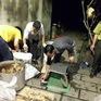 Đồng Nai: Tạm giữ hình sự chủ cơ sở nấu cao hổ