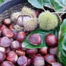 Những thực phẩm không nên ăn sống kẻo mang bệnh