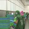 """EU sẽ phối hợp chặt chẽ để sớm rút """"thẻ vàng"""" cho thủy sản Việt Nam"""