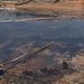 Hà Tĩnh: Tôm chết hàng loạt nghi do sốc nước sau bão