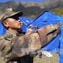 Sơ tán hàng nghìn người ở Tây Tạng (Trung Quốc) sau động đất