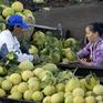 54 đề án xúc tiến nâng cao chuỗi giá trị thực phẩm ĐBSCL