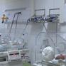 Trẻ sinh non, có bệnh nền cần được chăm sóc đặc biệt để tránh bị nhiễm khuẩn