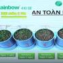 Giải pháp phòng trừ cỏ dại trên cây trồng