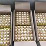 Giá trứng gia cầm giảm mạnh