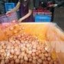 Hàn Quốc kiểm soát trứng nhiễm hóa chất