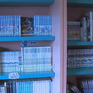 Bảo tàng truyện tranh, nhân vật hoạt hình tại Nhật Bản
