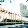 40 năm Liên Hợp Quốc đồng hành cùng Việt Nam