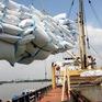 Cần tập trung cho chất lượng gạo xuất khẩu