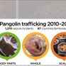 Đề xuất buôn bán động vật hoang dã nên được coi là tội phạm quốc tế