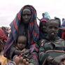 Ngày lương thực thế giới : Để thế giới không còn nạn đói vào năm 2030