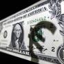 Venezuela loại đồng USD khỏi thị trường hối đoái