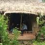 Họa sĩ Nguyễn Thượng Hỷ - Người nghệ sĩ quyết bỏ phố lên rừng ở ẩn