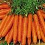 Cà rốt giúp cắt giảm khí thải carbon dioxide trong ngành xây dựng