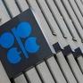 OPEC tìm chiến lược mới cho thị trường dầu mỏ