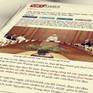 Trách nhiệm giới thiệu quy hoạch cán bộ cấp chiến lược