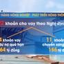 Tăng cường thu hồi nợ vay đóng mới, nâng cấp tàu cá