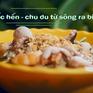 Thưởng thức mỳ ốc hến ngon độc lạ tại TP.HCM