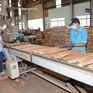 Tạm dừng kinh doanh tạm nhập, tái xuất gỗ tròn, gỗ xẻ từ Lào, Campuchia