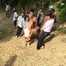 Rủ nhau tắm sông, 3 học sinh Nghệ An đuối nước thương tâm