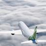 Thêm Bamboo Airways, thêm lựa chọn cho hành khách đi máy bay