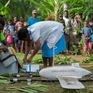Dùng máy bay không người lái vận chuyển vaccine tiêm chủng tại Vanuatu