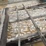 Cá lồng bè trên sông La Ngà lại chết trắng, người nuôi đứng ngồi không yên