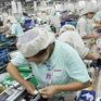 Sách trắng doanh nghiệp Việt: Bức tranh tổng thể về cộng đồng doanh nghiệp