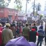 Xe bus rơi xuống vực ở Ấn Độ, 13 người chết thiệt mạng